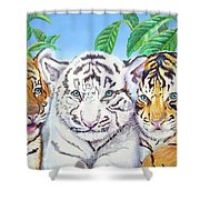 Tiger Cubs Shower Curtain