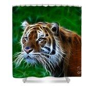 Tiger Dream Shower Curtain
