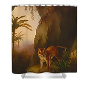 Tiger In A Cave Shower Curtain