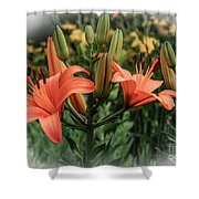 Tiger Lillies Shower Curtain