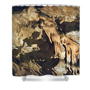 Tiger Of Baradla Shower Curtain