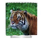 Tiger Profile Shower Curtain
