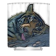 Tiger R And R V4 Shower Curtain