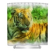 Tiger Resting Photo Art 01 Shower Curtain