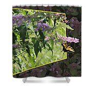 Tiger Swallowtail Oob-featured In Beautycaptured-oof-harmony And Happiness Shower Curtain