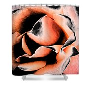 Tigers And Roses Shower Curtain