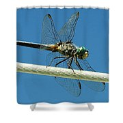 Tight Rope Walker Shower Curtain