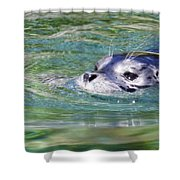 Time For A Swim Shower Curtain
