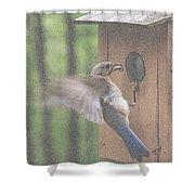 Time For Dinner Shower Curtain
