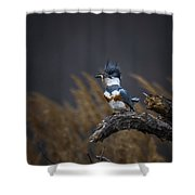 Time For Lunch Shower Curtain
