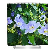 Time For Spring - Floral Art By Sharon Cummings Shower Curtain
