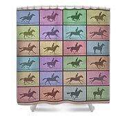 Time Lapse Motion Study Horse Color Shower Curtain