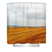 Time Remembers Shower Curtain
