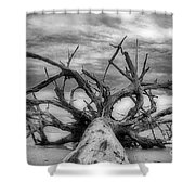 Time Sea And Sand Shower Curtain