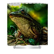 Time Spent With The Frog Shower Curtain