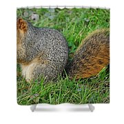 Time To Feast Shower Curtain