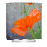 Time To Fly Shower Curtain
