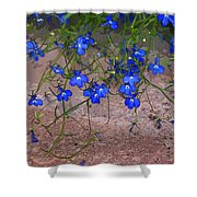 Tiny Blue Flowers Shower Curtain