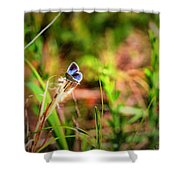 Tiny Butterfly Shower Curtain