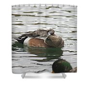Tiny Duck Cleaning 1 Shower Curtain