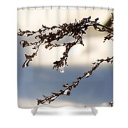 Tiny Icicles Shower Curtain