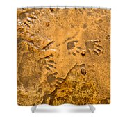 Tiny Patter Of Feet Shower Curtain