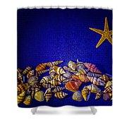 Tiny Sea Shells Shower Curtain