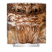 Tiny Spider 201 Shower Curtain