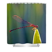 Tip Of The Grass Shower Curtain