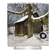 Tire Swing Shed Shower Curtain by Timothy Flanigan