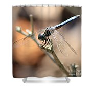 Tired Dragonfly Square Shower Curtain