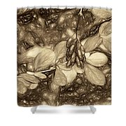 Tis The Season - Antique Sepia Shower Curtain