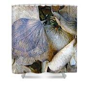 Tissue Paper Petals Shower Curtain