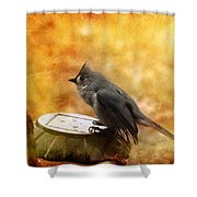 Titmouse In The Rain Shower Curtain