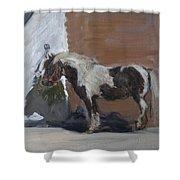 Tiverton Shower Curtain by Caroline Hervey-Bathurst