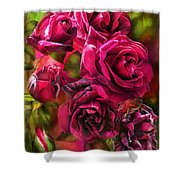 To Be Loved - Red Rose Shower Curtain