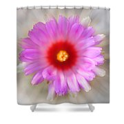 To Return To Innocence. Cactus Flower Shower Curtain by Jenny Rainbow