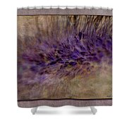 To Seed Shower Curtain