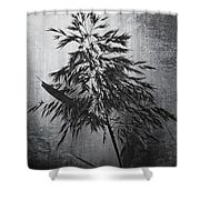 To Stand Alone  Shower Curtain
