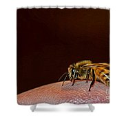 To Sting Or Not To Sting II Shower Curtain
