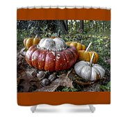 To Swell The Gourd Shower Curtain
