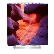 To The Center Of The Earth Shower Curtain by Inge Johnsson