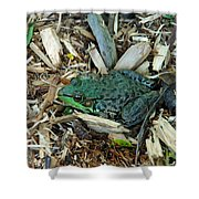 Toad Master Shower Curtain