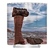 Toad Stool Formations Shower Curtain