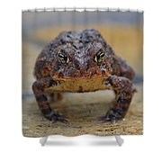Toad With An Attitude Shower Curtain