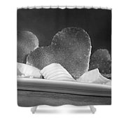 Toast Hearts With Butter Black And White Shower Curtain