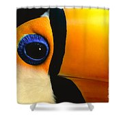 Toco Toucan Face Shower Curtain