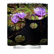 Together And Alone Shower Curtain