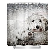 Together Shower Curtain by Elena Elisseeva