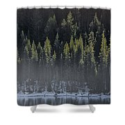 Toiga Lake Shower Curtain